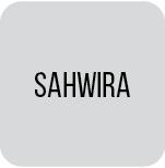 Sahwira Africa International ry